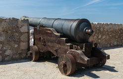 Cannon Stock Images