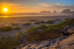 Cannon Beach. Beautiful coast at sunset royalty free stock images