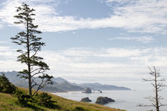 Cannon Beach at Ecola State Park Royalty Free Stock Images