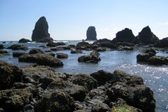 Cannon Beach, north Oregon coast Royalty Free Stock Photography