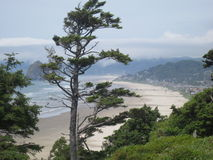 Cannon Beach, Oregon. USA, with Haystack Rock in the distance Royalty Free Stock Photo