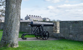 Cannon at Berwick upon Tweed Stock Photo