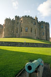 Cannon and the castle Stock Photography
