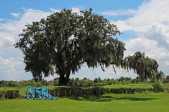 Cannon at Chalmette Battlefield. Downriver from New Orleans in Chalmette, Louisiana is the site of the January 8, 1815, Battle of New Orleans: Chalmette Stock Photography