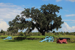 Cannon at Chalmette Battlefield. Downriver from New Orleans in Chalmette, Louisiana is the site of the January 8, 1815, Battle of New Orleans: Chalmette Stock Images