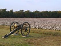 Cannon in civil war park. Cannon in civil war military park (surrounded by cotton field Stock Images