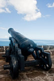 Cannon at Fort St. George royalty free stock photos
