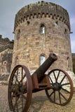 Cannon of Glenstal Abbey. Glenstal Abbey with cannonin Co. Limerick - Ireland Stock Photo