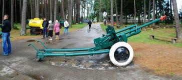 Cannon in the Grutas park near Druskininkai town Stock Photography