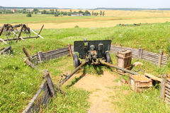 Cannon on position Royalty Free Stock Photo
