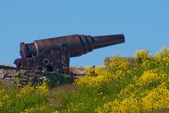 Cannon on Suomenlinna Island Stock Image