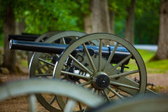 Cannon in the Woods Stock Photo