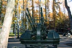 Cannone antiaereo Fotografie Stock