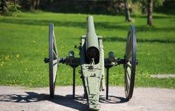 Cannone del campo Fotografia Stock Libera da Diritti