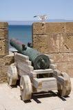 Cannone del mare immagini stock libere da diritti