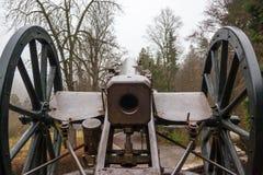 Cannone della fanteria dal portone del museo del castello di Peles Fotografie Stock