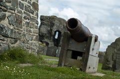 Cannone litoraneo del castello Immagini Stock Libere da Diritti