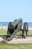 Cannone militare sulla spiaggia Immagini Stock