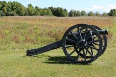 Cannone nel prato Fotografia Stock