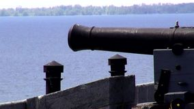 Cannons, Artillery, Weapons, Colonial stock video