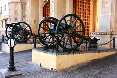 Cannons at City Palace complex gate, Udaipur, India Royalty Free Stock Photos