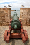 Cannons of Essaouira Royalty Free Stock Photography