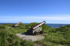 Cannons, Eyemouth Stock Image