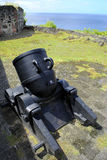 Cannons in St George's Fort royalty free stock images