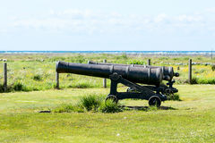 Cannons Stock Images