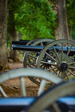 Cannons in the Woods Royalty Free Stock Photos