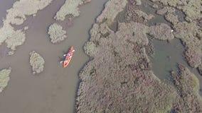 Canoë-kayak au paradis d'oiseau de plage de Calis clips vidéos