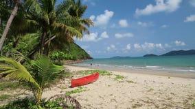 Canoë rouge sur la belle plage tropicale avec des palmiers banque de vidéos