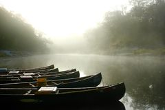 Canoës de matin image stock