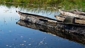 Canoës de pirogue de makoro de plan rapproché, delta d'Okavango, Botswana image libre de droits