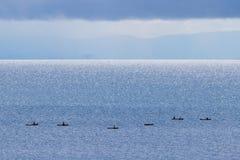 Canoës du Malawi photo libre de droits