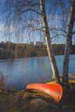Canoës et arbres de bouleau photographie stock libre de droits
