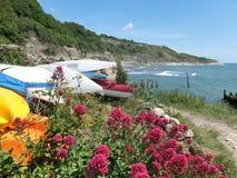 Canoës et fleurs par la mer photo stock
