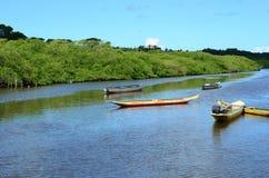 canoës flottant sur la rivière en Amérique latine photographie stock libre de droits