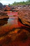 Cano Cristales, der sieben farbige Fluss Stockbild