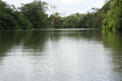 Cano Negro 01. A photo of Cano Negro river, near the border with Nicaragua, Costa Rica Stock Image