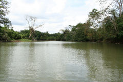 Cano Negro 02. A photo of Cano Negro river, near the border with Nicaragua, Costa Rica Stock Photography