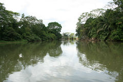 Cano Negro 04. A photo of Cano Negro river, near the border with Nicaragua, Costa Rica Royalty Free Stock Photography