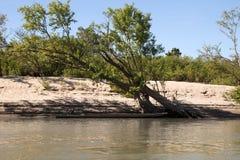 Canoa amarrada en riverbank arenoso foto de archivo