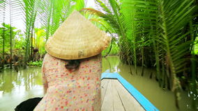 Canoa de la paleta del remero en el río Mekong magnífico majestuoso, Vietnam