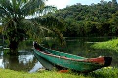Canoa de la selva tropical Imagenes de archivo