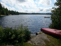 Canoa del lago loon Fotografia Stock