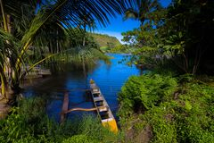 Canoa di intelaiatura di base della gru sul fiume di Wailua fotografia stock libera da diritti