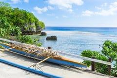 Canoa di intelaiatura di base della gru sotto la fronda della palma Immagini Stock