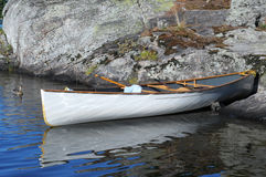 Canoa ed anatra Fotografia Stock