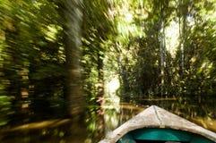 Canoa en la selva tropical del Amazonas Imagen de archivo libre de regalías